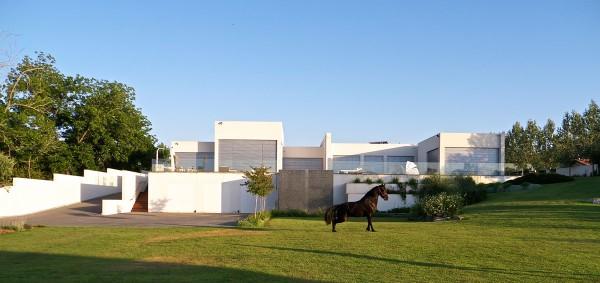 modern-villa15